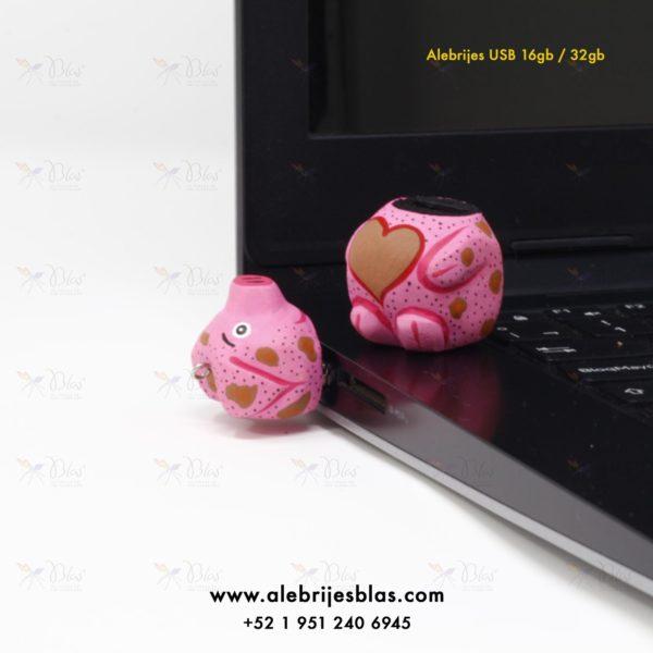 https://www.alebrijesblas.com/wp-content/uploads/2019/02/08-ALEBRIJE-PICHON-USB.jpg